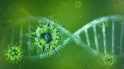 Lentefeest afgelast door coronavirus