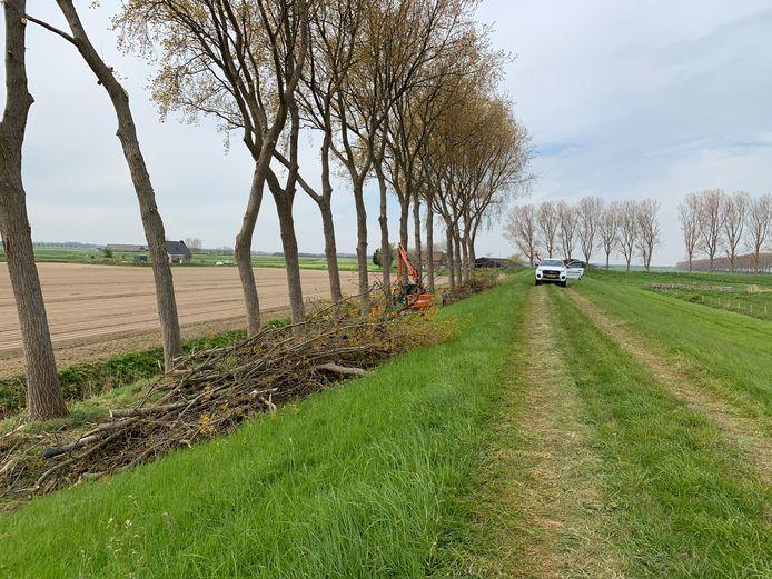 De werkzaamheden aan de buitendijk in Sommelsdijk liggen sinds vrijdag stil.