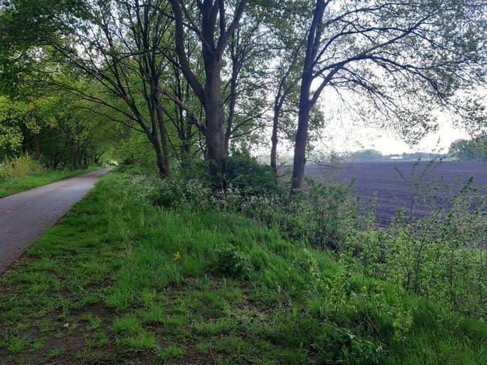 Op het akkerland naast het Bels Lijntje en de waterzuivering in Riel moet een zonnepark van 7,7 hectare worden.