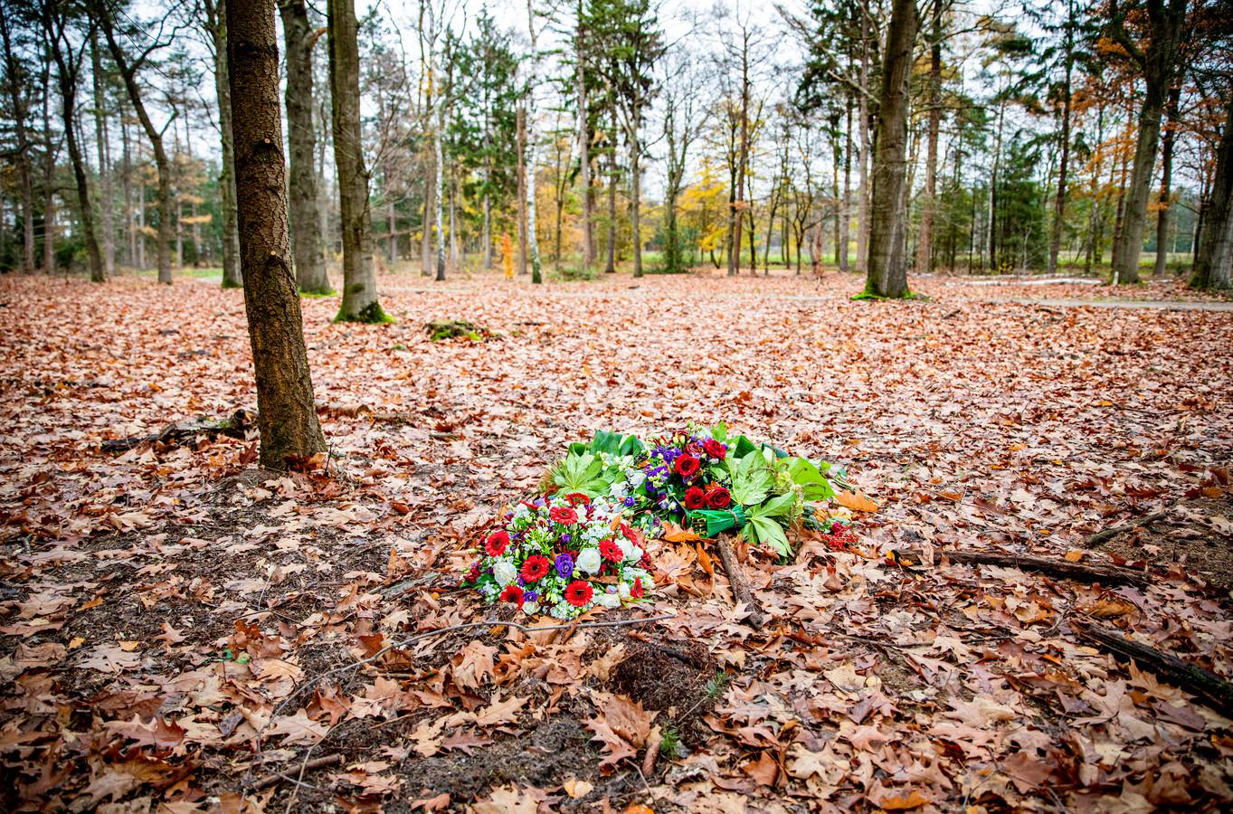 Impressie van Heidepol bij Arnhem, het paradepaardje van Natuurbegraven Nederland. Natuurbegraven Nederland heeft ook plannen voor natuurbegraafplaats De Polberg in Wapenveld.