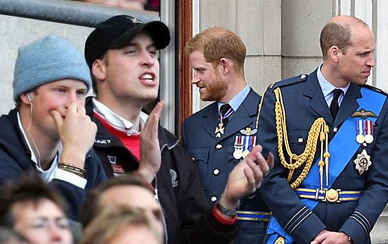 Wat liep er mis tussen Harry en William?