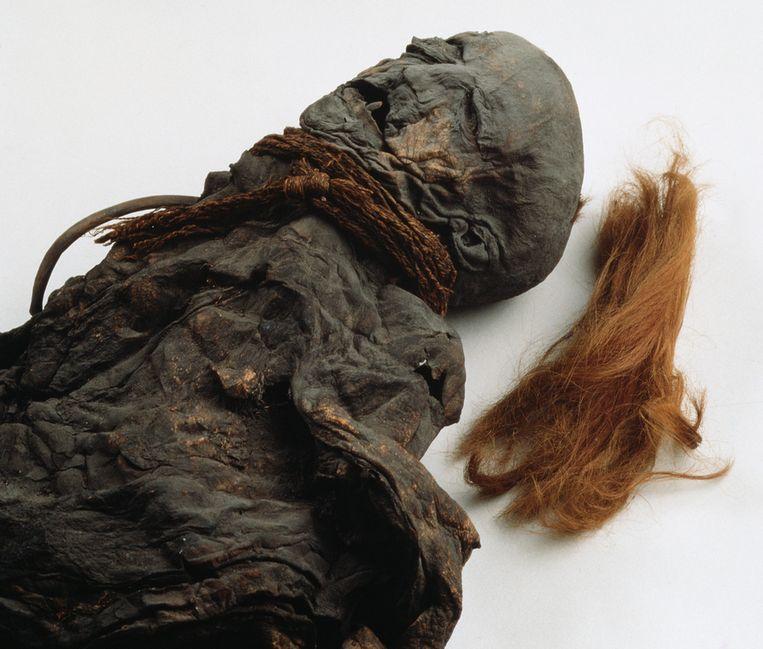 Het meisje van Yde, het veenlijk dat deel uit maakt van de permanente collectie van het Drents museum. Beeld Rob Huibers