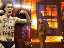 Dierenactivist stak trucks en - per ongeluk - zichzelf in brand bij eendenslachterij Ermelo: 'Ik ben er niet trots op'