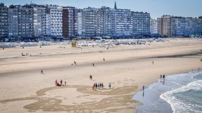 Reusachtige inktvis op strand van Blankenberge is promostunt voor rum-merk