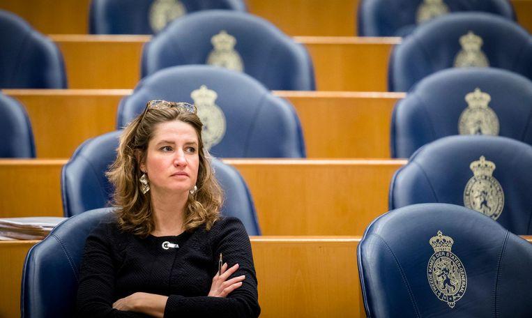 Sharon Gesthuizen in de Tweede Kamer. Beeld anp
