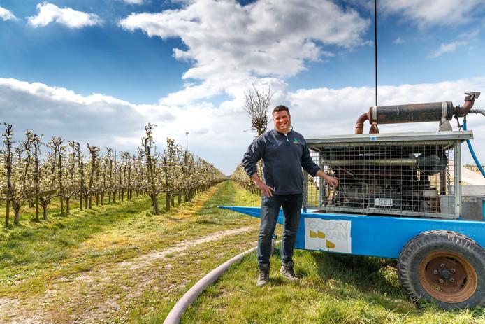 Eddy den Dunnen in de boomgaard van Westende Fruitteelt in Fijnaart. Hij beregent de peren met slootwater, via sproeiers en enorme pompen.