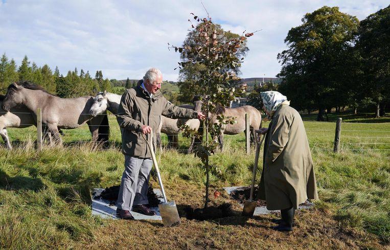 De Britse koningin Elizabeth (95) en haar zoon, prins Charles (72), planten een jonge koperbeuk bij het Balmoral Cricket Paviljoen in Schotland. Deze feestelijke gebeurtenis markeert het 70-jarig troonjubileum van de koningin. De komende tijd worden in het Verenigd Koninkrijk meer bomen geplant om dit te vieren.  Beeld AFP