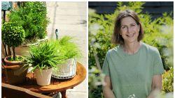 """""""Kamerplanten buitenzetten maakt ze sterker én mooier"""": zo pak je het volgens onze tuinexperte slim aan"""
