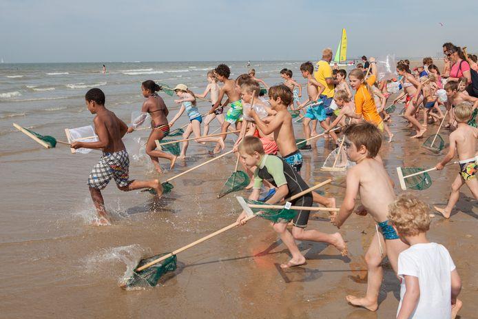 Een algemeen beeld van garnaalkruien, zoals een gelijkaardig evenement in Oostende plaatsvindt.