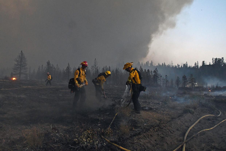 Californië wordt jaar in jaar uit getroffen door vernietigende bosbranden.