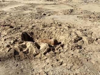 Obus gevonden bij graafwerken op Zeedijk in Westende: DOVO brengt springtuig vanavond tot ontploffing