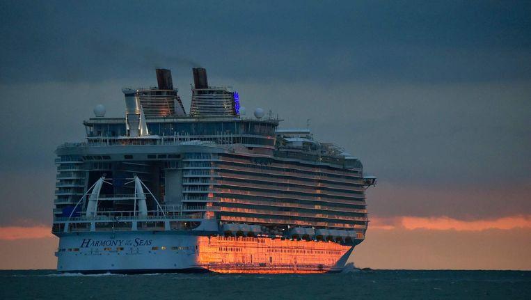 De cruisevakantie blijkt minder populair onder Nederlanders. Beeld ANP