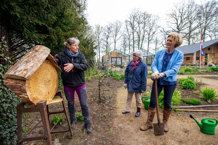 Vrijwilligers op Landgoed Klarenbeek helpen bijen en vlinders graag een handje. Dit is van belang vanwege de achteruitgang van insecten, waaronder bijen en vlinders. Daarom is er een groot nieuw bijenhotel geplaatst. Van links naar rechts: Régine van Heest, Marleen Onclin en Frieda van Heist.