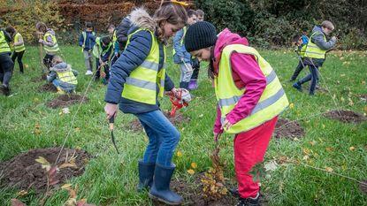 Leerlingen plantten 1,36 hectare Krommebeekbos