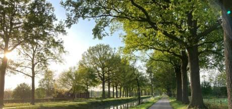 Eén bezwaar betekent geen 30 kilometer op Koolweg in Helenaveen