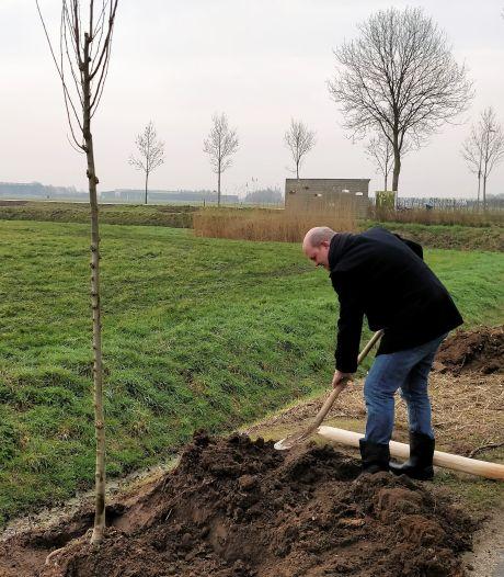 Diverse soorten bomen vervangen 375 gerooide zieke essen