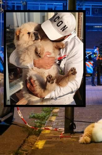 """Wisam (37) doodgeschoten tijdens het uitlaten van z'n hondje: """"Hij was gek op die chowchow, dat was zijn zoontje"""""""