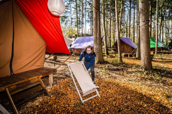 De tenten op de nieuwe camping van Burgers' Zoo.