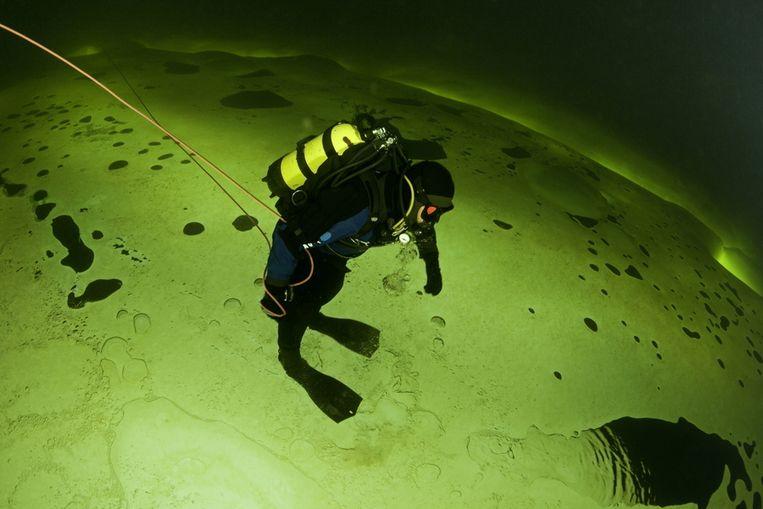 Een duiker trotseert de kou in de Witte Zee nabij de noord-westkust van Rusland. De watertemperatuur ligt op min twee graden, maar dat weerhield fotograaf Franco Banfi er niet van om tien meter onder water te duiken en vast te leggen hoe het Noorderlicht op prachtige wijze door het ijs heen schijnt. Beeld Brunopress