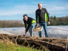 Oirschot 'claimt' 60 hectare grond voor woningbouw
