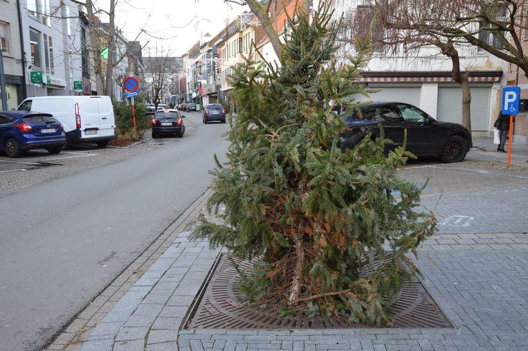 Bij de kerstbomen in het stadscentrum zit er hier en daar wel een vreemd exemplaar tussen.