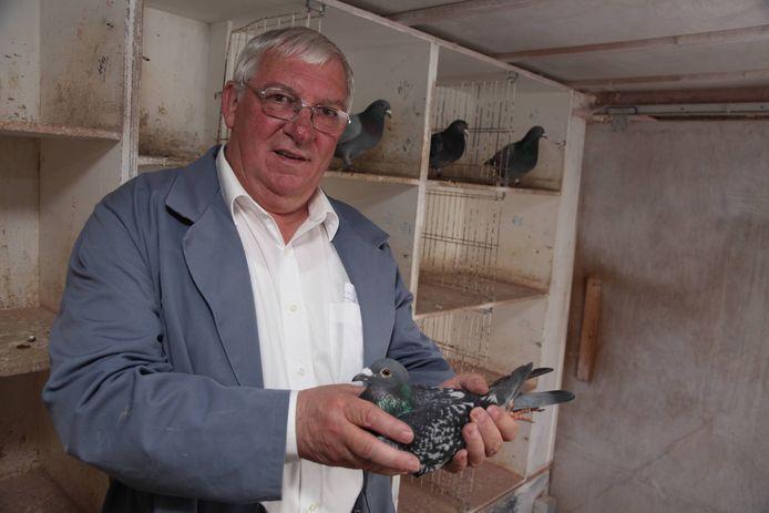 Wilfried met een duif die de tocht boven Frankrijk overleefd heeft.
