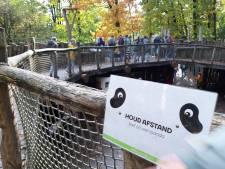 'Dringen' in dierentuinen in herfstvakantie: 'Als je de dieren ziet, vergeet je soms de coronaregels'