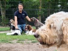 Drukke beestenboel bij de dierenpensions: nog maar weinig plekken vrij