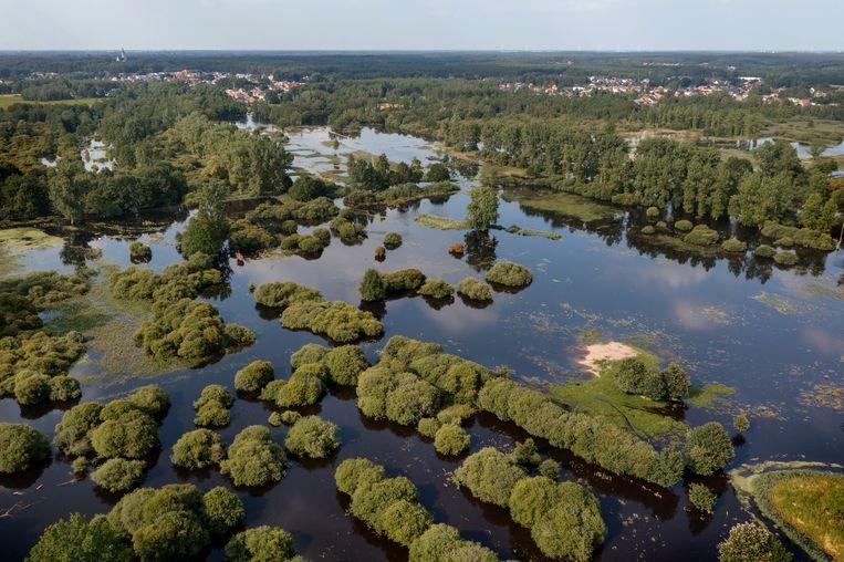 De overstroomde Demerbroeken vanuit de lucht bekeken. 'Overal waar je zwart water ziet, zou het groen moeten zijn.' Beeld www.kevinfeytons.be