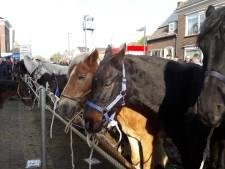Paardenmarkt Hedel nu grootste van het land; feestnacht rustig verlopen