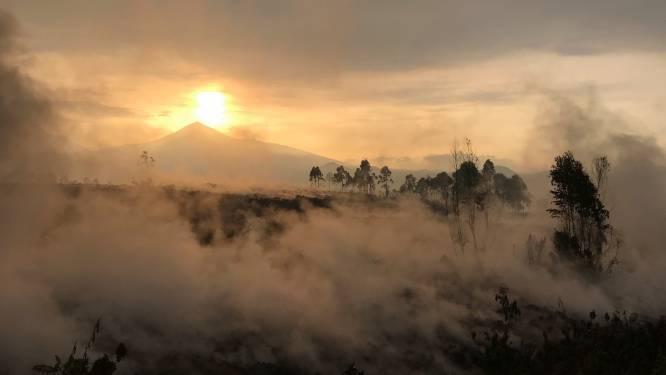In Congo dan toch geen tweede vulkaan uitgebarsten bij de Nyiragongo
