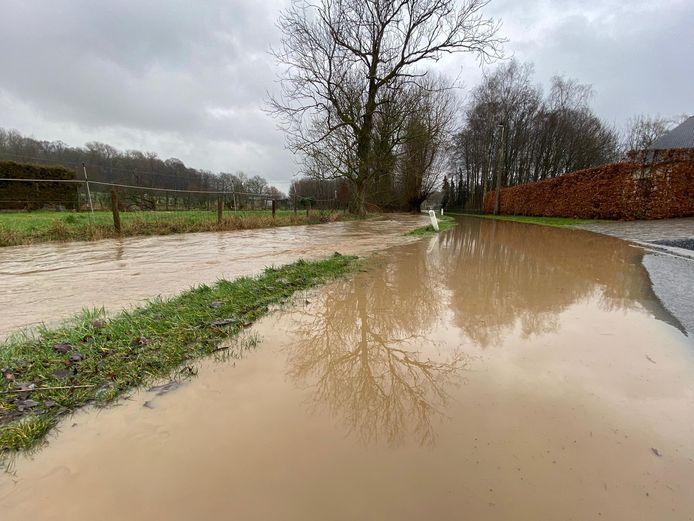 De Maarkebeek in Maarkedal trad buiten haar oevers.