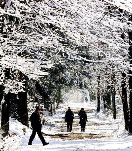 Sneeuw op komst: 'Zondag wakker in witte wereld'