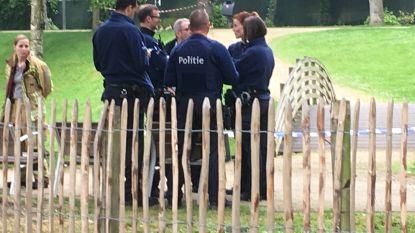 Wandelaar treft levenloos lichaam aan in stadspark