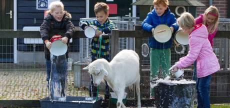 Weer ingebroken bij kinderboerderij in Zutphen: 'We zijn het zat, er is hier niets te halen'
