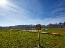In Barchems natuurgebied Hagenbeek moeten wandelaars en honden oppassen voor zeer besmettelijk plantje