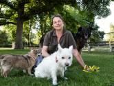 Susan redt vrijwillig dieren, 24 uur per dag: 'Mensen weten me altijd te vinden als er iets aan de hand is'