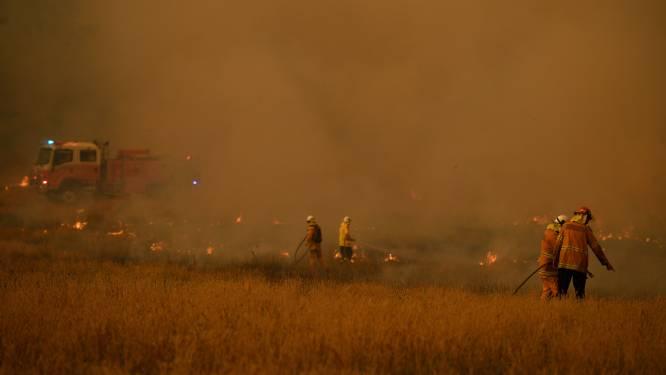 Brandweerman omgekomen bij bosbranden Australië