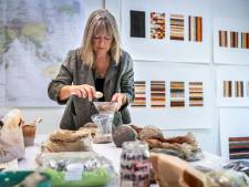 Kunstenares Elvira Wersche uit Nuenen brengt letterlijk alle kleuren van de wereld naar de Tweede Kamer