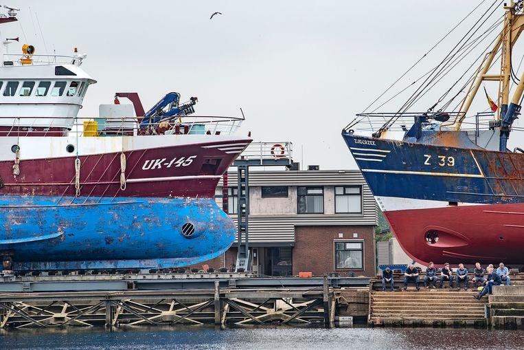 De haven van Urk, twee boten liggen in op het droge voor reparatie en onderhoud.  Beeld  Guus Dubbelman / de Volkskrant