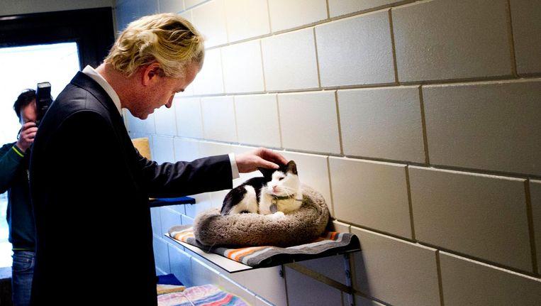 Wilders tijdens een bezoek aan een asiel in 2011. Beeld ANP