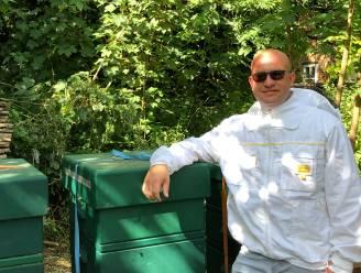 """Na meer dan 60 jaar terug bijenkorven op begijnhof : """"Unieke honing waarvan opbrengst naar goede doelen gaat"""""""