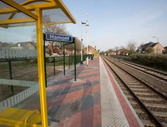 """Dan toch spoorverbinding Hamont-Weert? Burgemeesters ijveren voor """"eenvoudig dossier"""""""