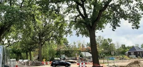 Gesteggel over rotonde óf stoplichten aan de Graafsebaan Heesch bij Raad van State
