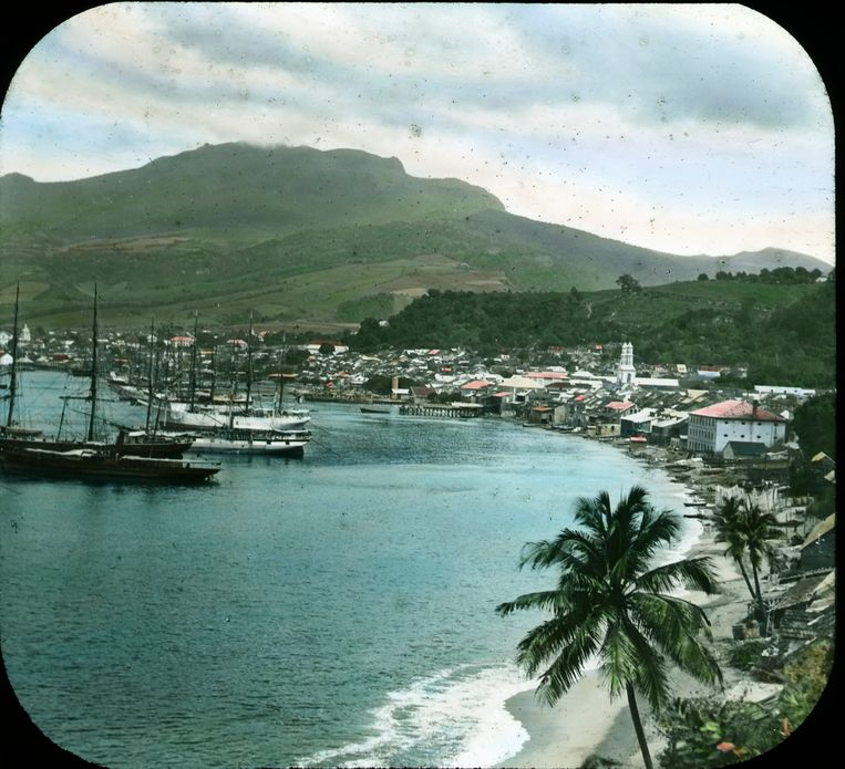 Het eiland Martinique in de Caribische Zee. Beeld Getty Images