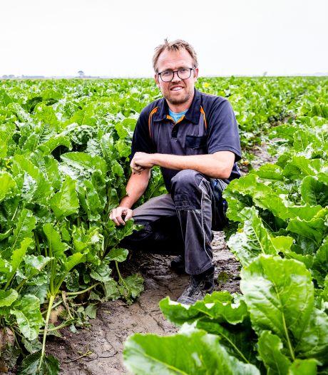 Boer Pieter staat niet te juichen aan begin van oogstseizoen, ondanks natte zomer: 'Er komt geen stormloop'