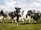Ik gun boeren een bloeiend familiebedrijf, maar ik maak me zorgen over het klimaat
