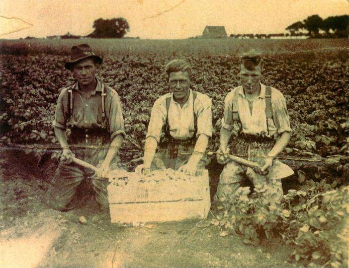 In de jaren veertig verdienden veel Willebrorders ver van huis