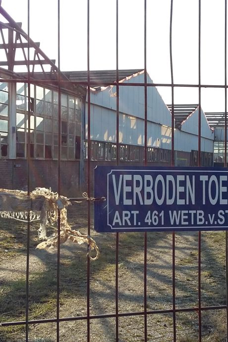 Plan voor huisvesting van 48 arbeidsmigranten op Amac-terrein in 's-Heerenhoek