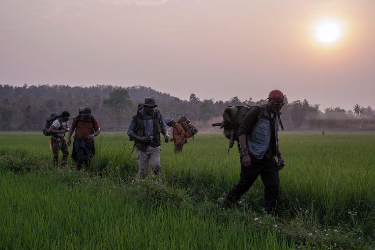 In 'Da 5 Bloods' keren vier veteranen terug naar Vietnam. Beeld
